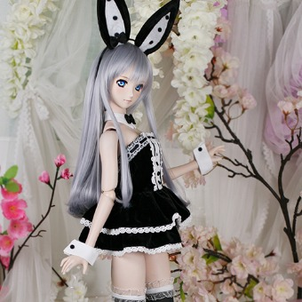 CDD-167 - DOLLSN,DD,BJD TOTAL SHOP